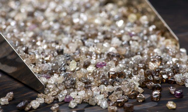 NATURAL DIAMOND COUNCIL – RENCONTRE AVEC SA directrice France…