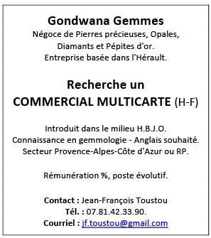 Recherche COMMERCIAL MULTICARTE (H/F)